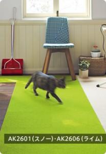 ペットの為のカーペット
